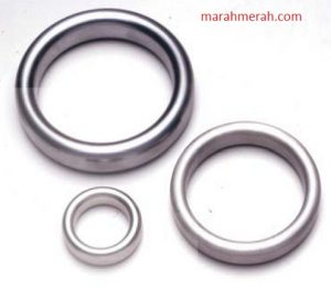Metal O-Ring Gasket