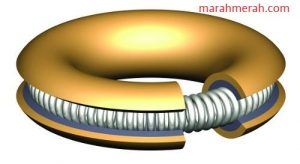 Metal Spring-Energizing Ring